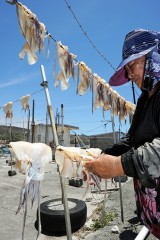 The sun shining on squid drying in the open air on Ojima Island