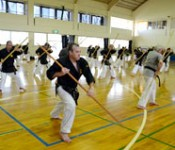Worldwide karate seminar held in Yomitan