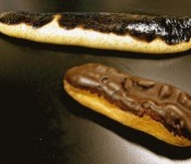Eclair-like sea cucumbers found in waters near Okinawa, but