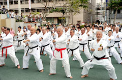 Karate demonstration on Karate Day