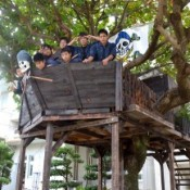 Pirate ship appears in a tree at Chubu Agricultural High School