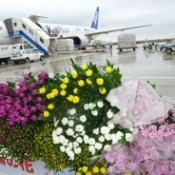 Special flight to carry chrysanthemums for <em>Higan</em>
