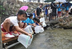 Children release Ryukyu-ayu fry into the Genka River