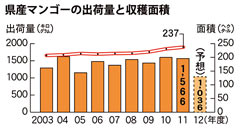 Okinawa Prefecture anticipates 30% lower mango production in 2012