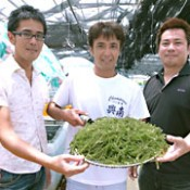 Okinawan sea grapes become a brand product