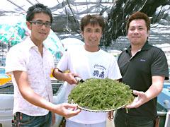 Okinawan sea grapes become a brand product