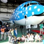 Whale Shark Airplane unveiled