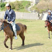 Okinawan traditional horse racing to be revived