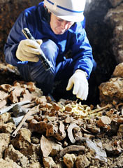 Volunteers excavate remains