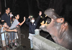 Parents and children enjoy night zoo