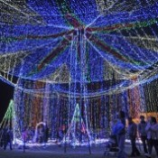 Peace Illumination - 300,000 lights in Itoman