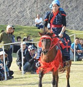 <em>Uma-harashi</em> horse racing held in Okinawa Zoo & Museum