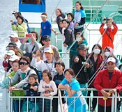 Tokashiki Island Marathon: Runners and volunteers enjoy whale watching