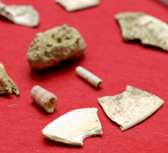 Japan's oldest shell tools found in Sakitari Cave in Okinawa