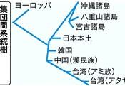 Genetic DNA of Okinawan people similar to people in the main islands of Japan
