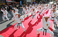 1,000 martial artists demonstrate their karate routines