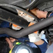 Kitten stuck between car saved