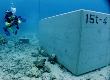 US base construction: 20-ton concrete blocks destroy coral in Oura Bay