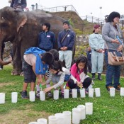 Elephants return to Fukushima after spending winter in Okinawa
