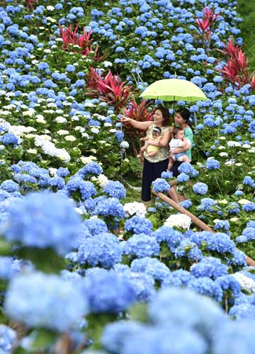 Rainy season starts later than usual in Okinawa