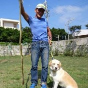 Discarded dog becomes snake hunter