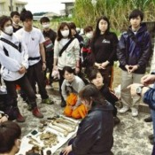 161 college students from outside of Okinawa engaged in collecting remains of war dead