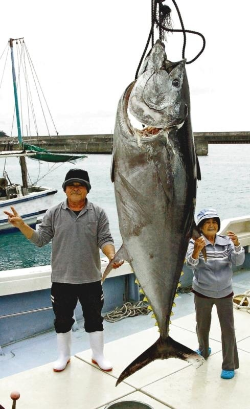 Big bluefin tuna caught off Kume Island coast