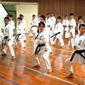 Okinawa Shogaku highlights benefits of making karate compulsory