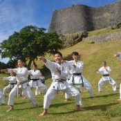 Local karate dojos hold first training of the year against background of World Heritage Site Katsuren Castle Ruins
