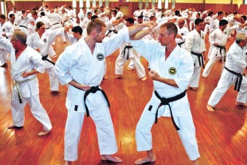 130 Karate-ka from all over the world gather for Shima-ha Shorin-ryu training camp