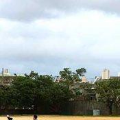 Osprey spotted flying above Futenma Elementary School