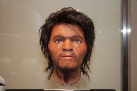 The National Museum of Nature and Science in Tokyo exhibits reconstructed face model of Paleolithic era person