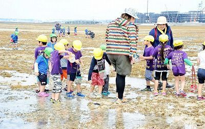 People digging clams and praying for health at beaches in Okinawa