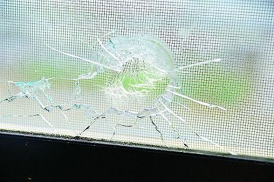 Okinawa Police determine broken farm shed windows caused by stray bullet