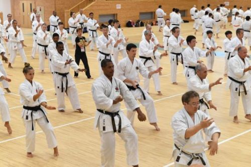 Okinawa sends out the call for Karate practitioners worldwide as part of a new focus on martial arts tourism that has many expecting positive economic results