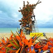 Flower art blooms on the beach: giant plant sculpture created using 8,300 Strelitzia