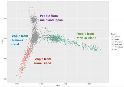 University of the Ryukyus research team finds distinct hereditary groups among Okinawan islands