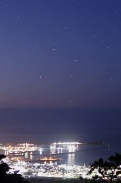 Southern Cross viewing season arrives in Ishigakijima