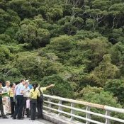 Japanese government to renominate Amami-Okinawa site for World Natural Heritage status