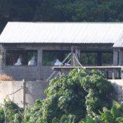 "Hog Cholera raises concern in Okinawa where ""pork is culture"""