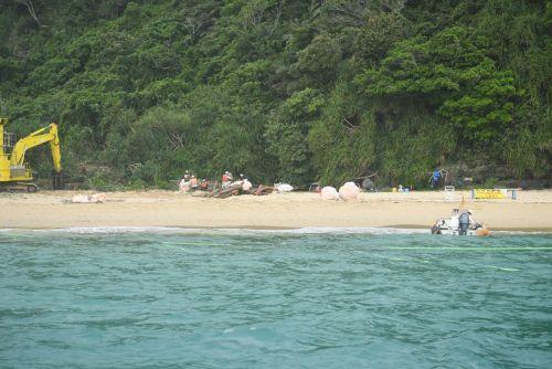 Henoko locals question Okinawa Defense Bureau's artificial turtle nests