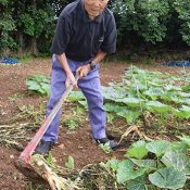 "Active Grandpa Turns 100 ""I wish I were 18 or 19 Again!"" To the Fields Again Today	Mr. Yamajiro of Ie"
