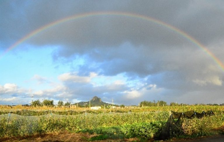 Rainbow adorns sky over Tacchu in Iejima, Okinawa during first sunrise of the new year