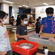 Diplomas made of Basho-shi by sixth graders in Ogimi, home of Basho-fu and Shikuwasa