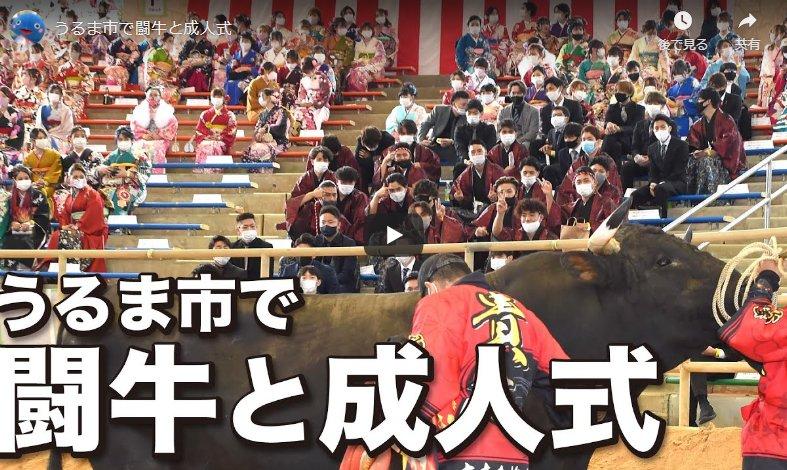 Video – Uruma City combines bullfighting and a coming-of-age ceremony amid the coronavirus pandemic