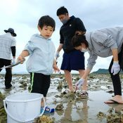 Family all smiles digging for shellfish on Hamauri, the third day of the third month on the traditional lunar calendar