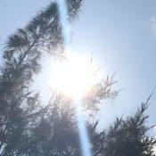 Naha City ranks last in summer's highest temperatures across Japan